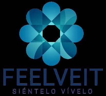 Feelveit